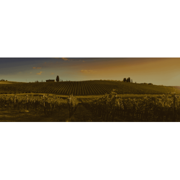 Вино Famille Bougrier Vouvray Chenin Blanc, 2018 (0.75 л)