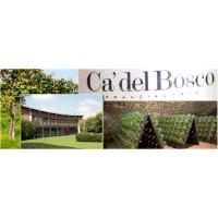 Игристое вино Ca' del Bosco Dosage Zero (0,75 л)