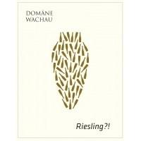 Вино Domane Wachau Riesling Amphora (0,5 л)