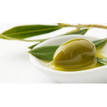 Оливковое масло Coppini Terni Olio Extra Vergine di Oliva Classico, 1л