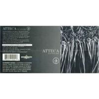 Вино Bodegas Atteca Atteca (0,75 л)