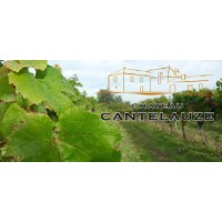 Вино Chateau Cantelauze, 2010 (0,75 л)