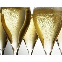 Игристое вино Doudet Naudin Cremant de Bourgogne (0,75 л)