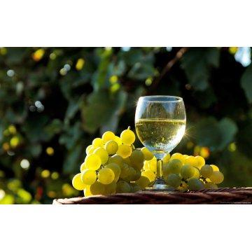Вино Domaine Du Colombier Petit Chablis (0,75 л)