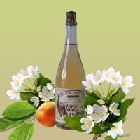 Сидр Vallee de la Seiche Cidre Blanc Traditionnel Artisanal (0,75 л)