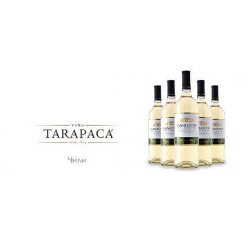 Вино Tarapaca Sauvignon Blanc Sarmientos (0,75 л)