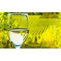 Вино Don Pascual Sauvignon Blanc (0,187 л)