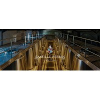 Вино Famille Perrin Perrin Cotes du Rhone Villages (0,75 л)