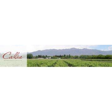Вино Callia Shiraz Magna Callia (0,75 л)