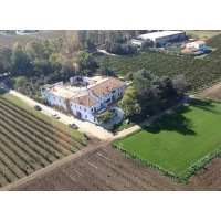 Вино Di Majo Norante Tintilia Riserva (0,75 л)