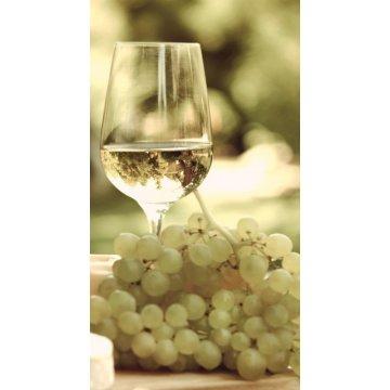 Вино Firriato Roccaperciata Inzolia-Chardonnay (0,75 л)