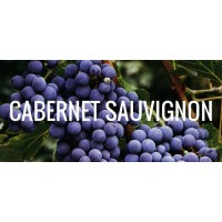 Вино Firriato Altavilla della Corte Cabernet Sauvignon (0,75 л)