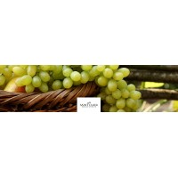 Вино Saint Clair Gewurztraminer Pioneer Block (0,75 л)
