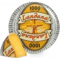 Сыр 1000 дней 48%