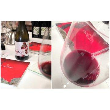 Вино Jorge Ordonez & Co Botani Garnacha (0,75 л)