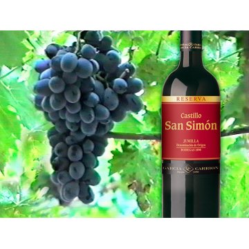 Вино Castillo San Simon Reserva (0,75 л)