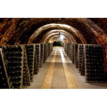 Игристое вино  Lavernoya Heretat de Lacrima Baccus Brut (0,75 л)
