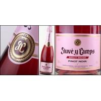 Игристое вино Juve y Camps Brut Rose (0,75 л)