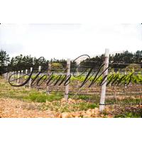 Вино Storm Pinot Noir Ridge, 2016  (0,75 л)