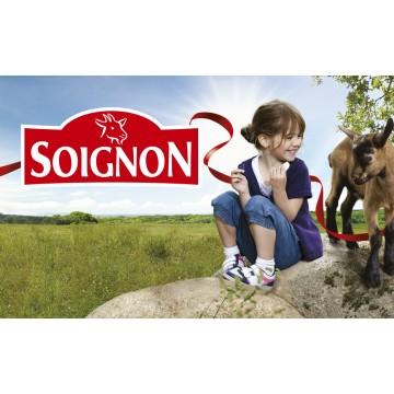 Сыр козий с травами мини ТМ Soignon (110 г)