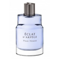Туалетная вода Eclat D`Arpege Pour Homme, 100 мл