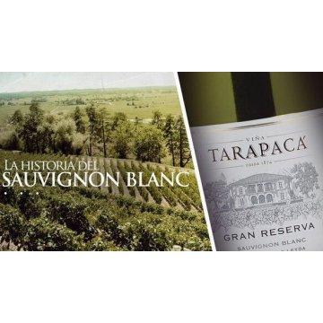 Вино Tarapaca Sauvignon Blanc Gran Reserva (0,75 л)