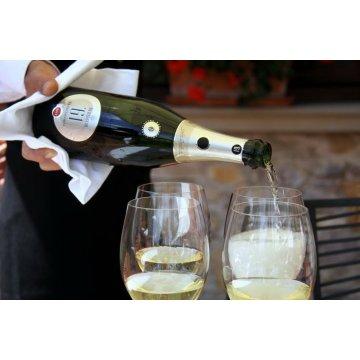 Игристое вино Guido Berlucchi 61 Franciacorta Brut (0,75 л)