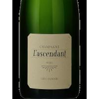 Шампанское Mouzon-Leroux l'Ascendant Solera Extra Brut (0,75 л)