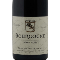 Вино Domaine Fabien Coche Bourgogne Pinot Noir (0,75 л)