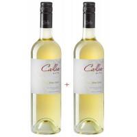 Набор Salentein Pinot Grigio Callia Alta (0,75 л) + Pinot Grigio Callia Alta (0,75 л)