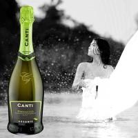 Игристое вино Canti Prosecco Extra Dry Biologico (0,75 л)