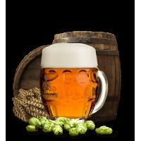 Пиво Svijany Svijany '450' (0,5 л)